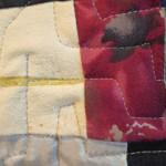 Slpits close up 2