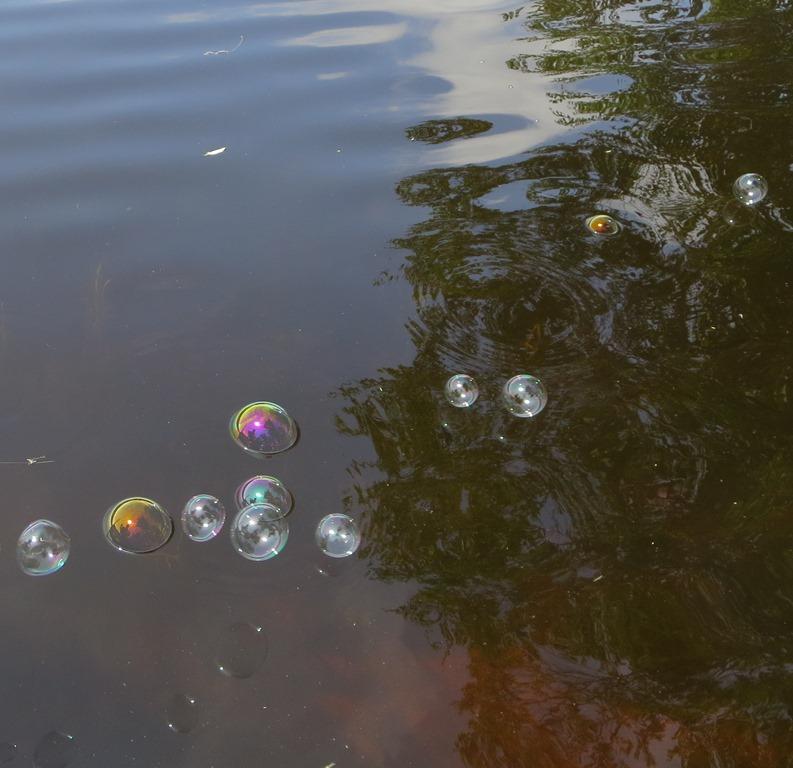 Bubbles at the lake