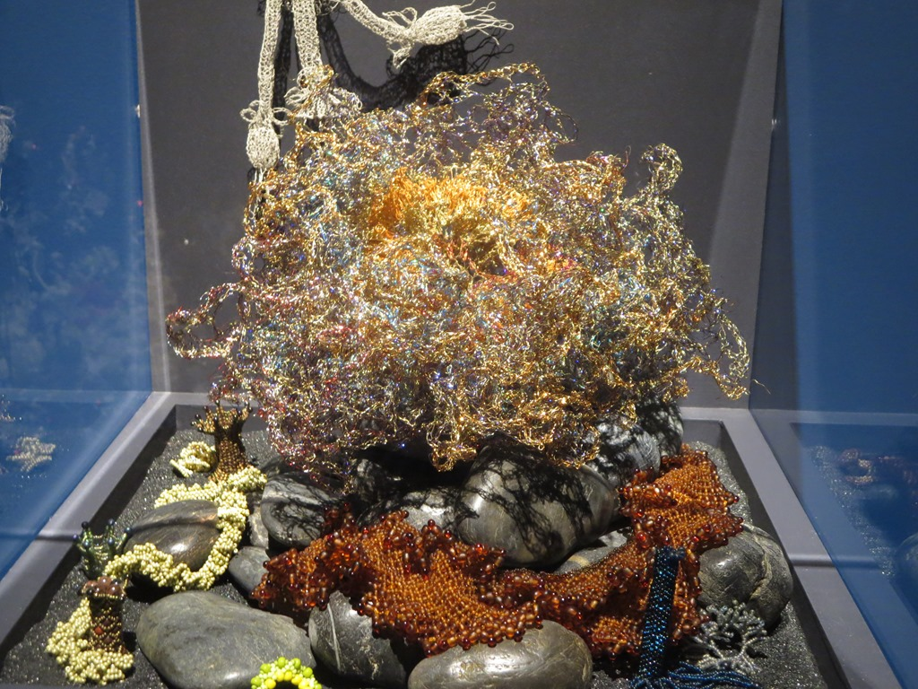 bear coral