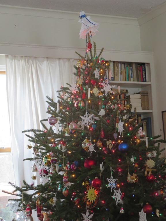 Judy's tree