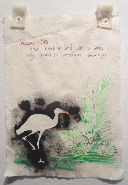 Wood Ibis